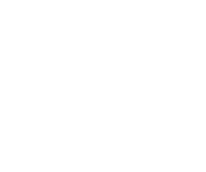 Logo_NoReset